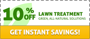 Lawn Treatment Coupon
