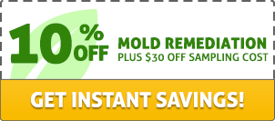 10% off mold remediation, plus $30 off sampling cost. Get instant savings!