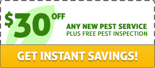 $30 off any new pest service plus free pest inspection. Get instant savings!