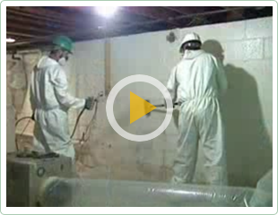 Mold Remediation Albany NY Video