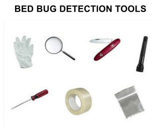 Bed Bug Inspection Tools