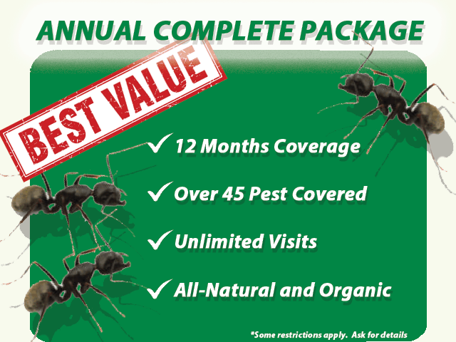 Annual Complete Package