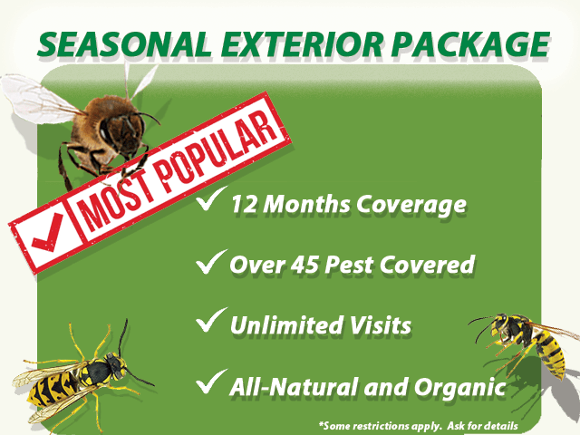 Seasonal Exterior Package