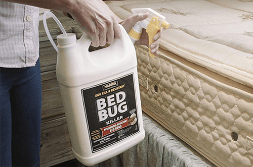 all natural sprays for bed bugs