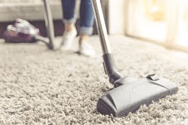 Does Vacuuming Kill Bed Bugs