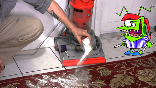 Bed Bug Sprays
