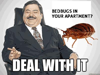 Rochester NY Bed bugs Tenants