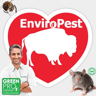 EnviroPest - Buffalo's leading exterminators