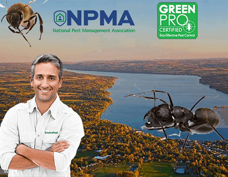 National Pest Management Association banner