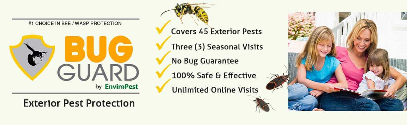 Bug Guard exterior pest protection program