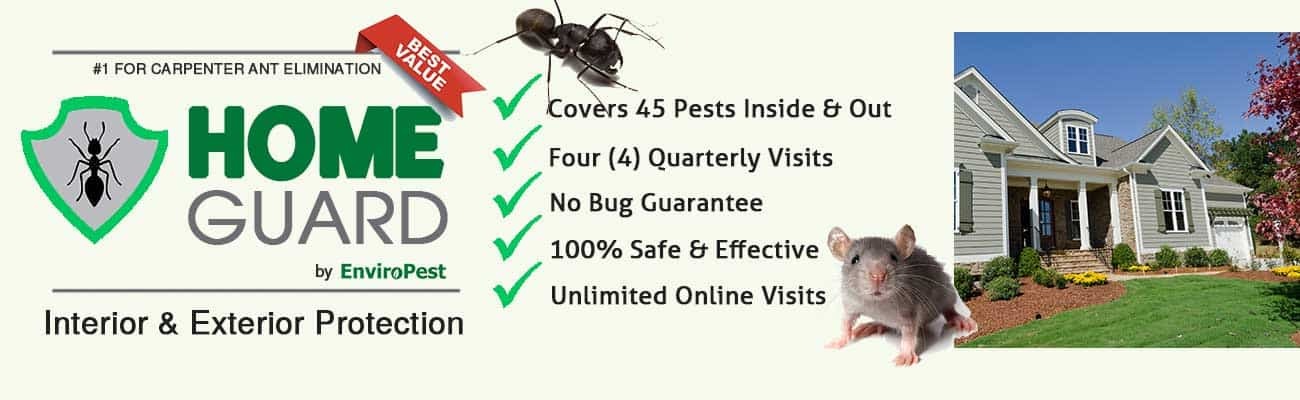 Home Guard interior and exterior pest protection