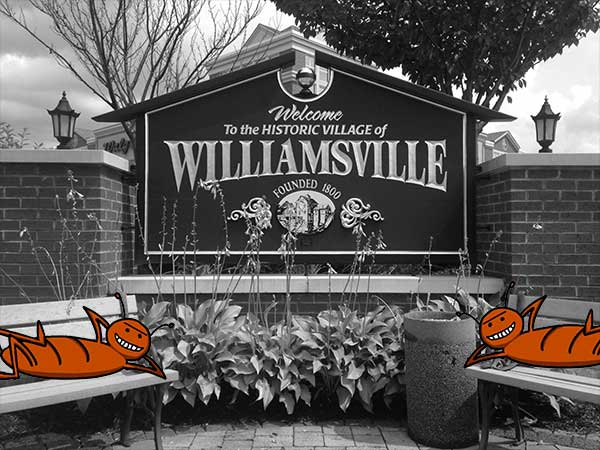 ants next to Williamsville, NY sign